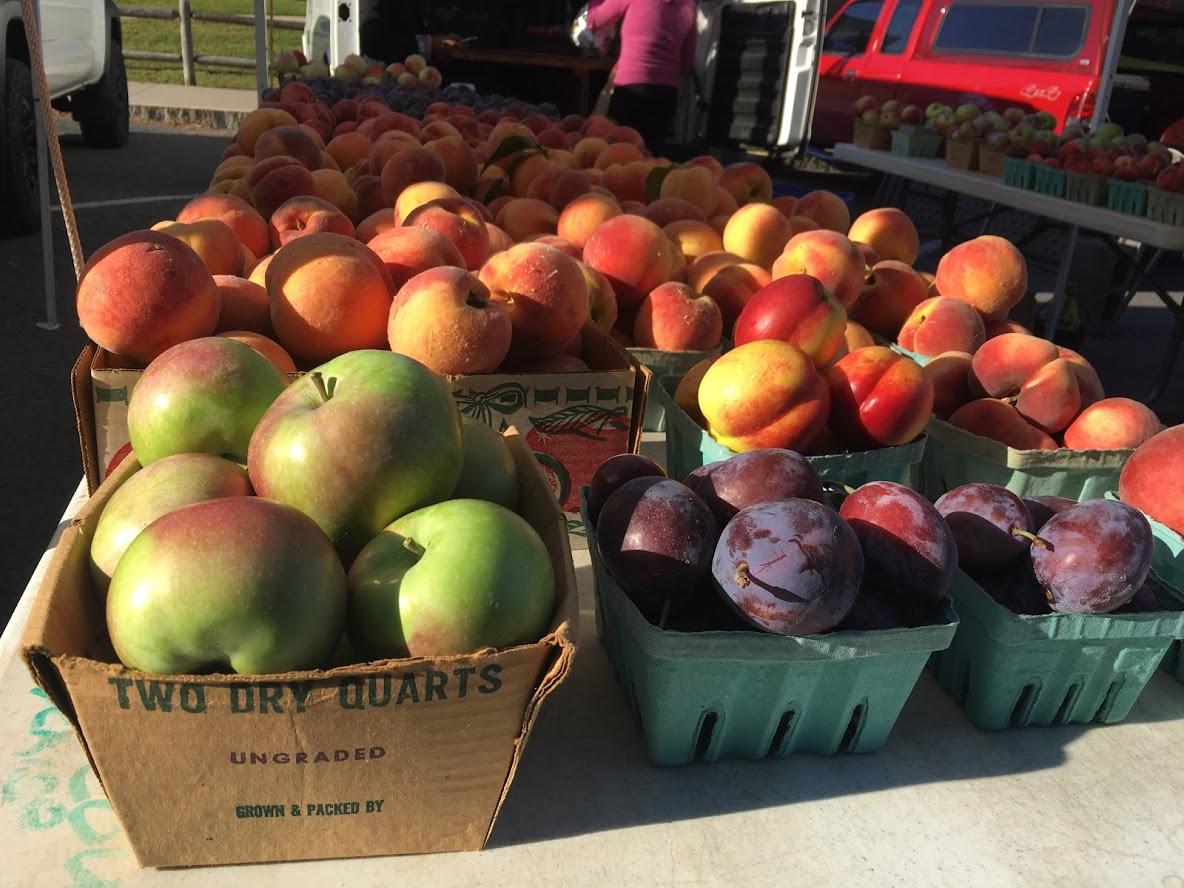 Farmers Market Delmar, Slingerlands, Glenmont, Guilderland, Albany Voorheesville
